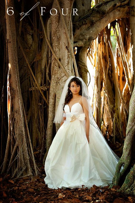 Amsale_Wedding_dress_banyan_tree_Florida